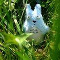 Un aventurier ..... en herbe