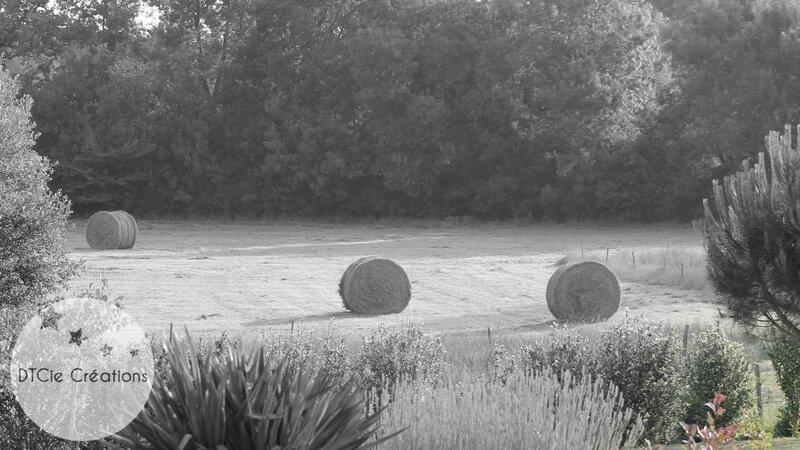 Jardinroumbaleurs