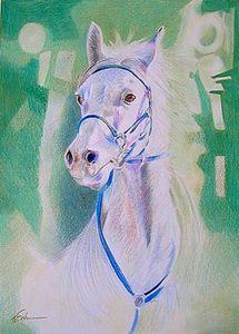 Le_cheval_blanc__24x34_cr_de_couleur