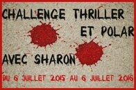 challenge thrillers polars sharon