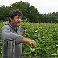 Didier Chaffardon, vigneron en Aubance