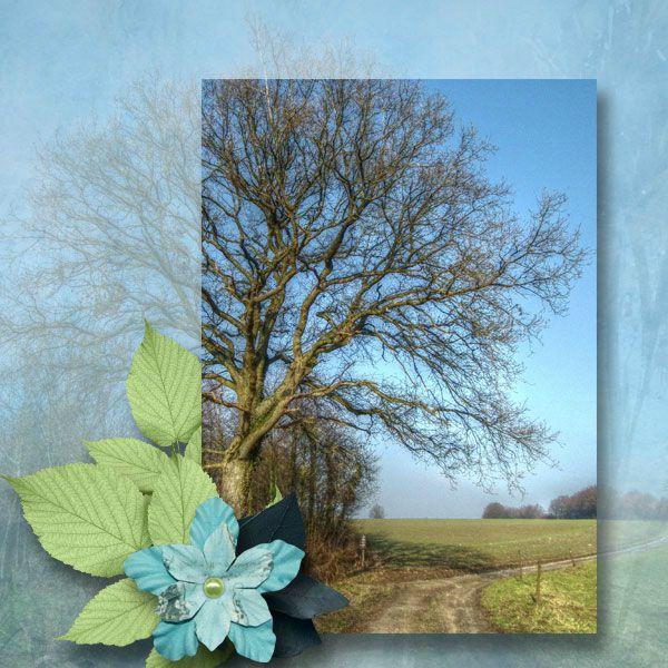 Les pages d'OCTOBRE 2012 - Page 9 80396590_o