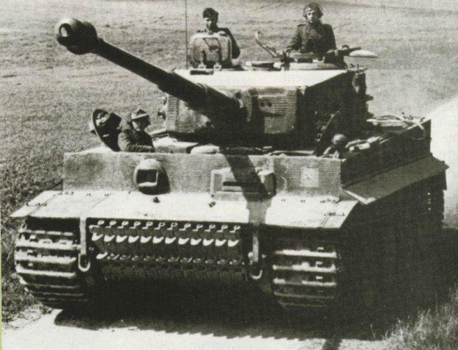 Tigre-1