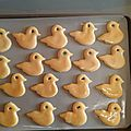 BISCUITS CANARDS