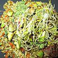 Le mélange quinoa-lentille corail