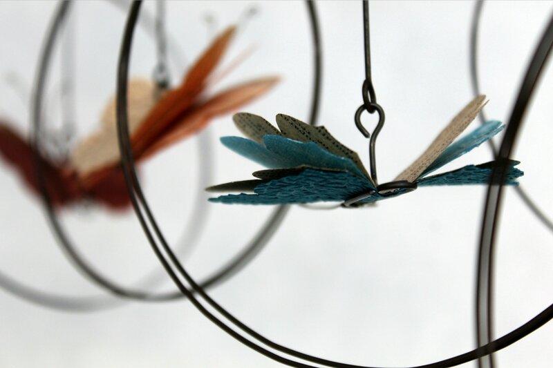 papillons couleur6