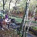 balade liberté - Mesnil Ozenne à cheval (6)