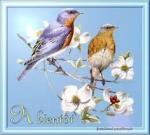 à bientôt oiseaux