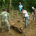Travail des volontaires