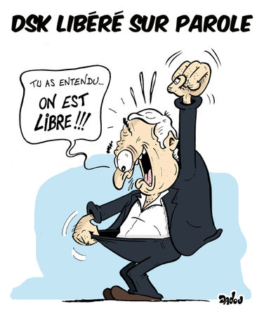 dsk_lib_r__net