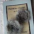 Fleurs/broches au crochet