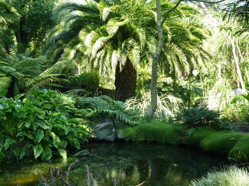 Photos de jardin georges delaselle ile de batz 29253 for Jardin georges delaselle