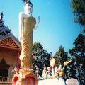 Phrathat Doi Kongmoo Bouddha debout
