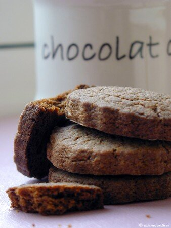 speculoos01