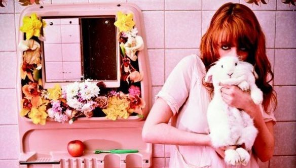 florence_and_the_machine_rabbit