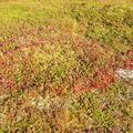 13-09-08 Sortie montagne (46)