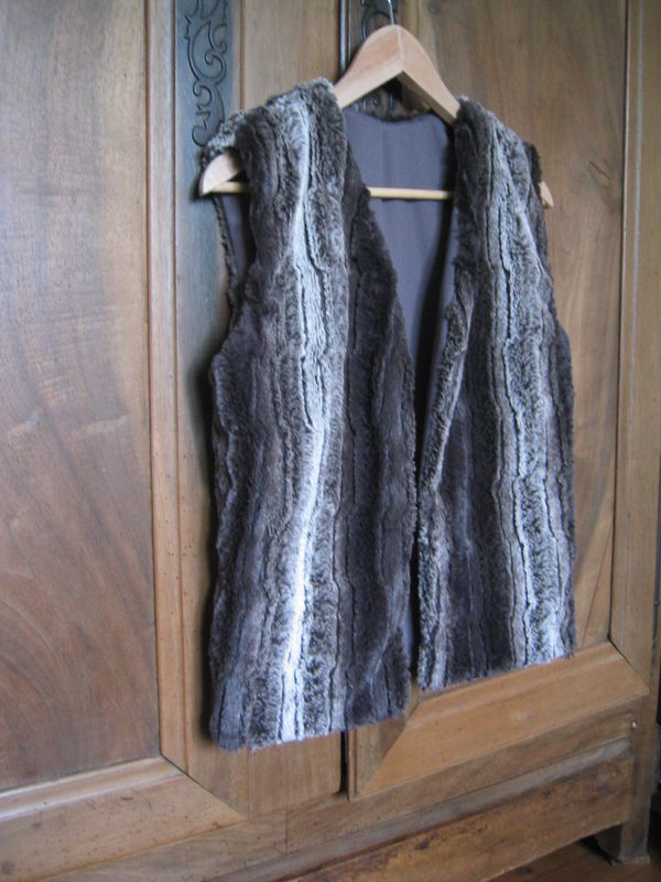 Le gilet de l'hiver 2008 - 2009