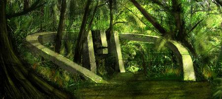 forestwebig