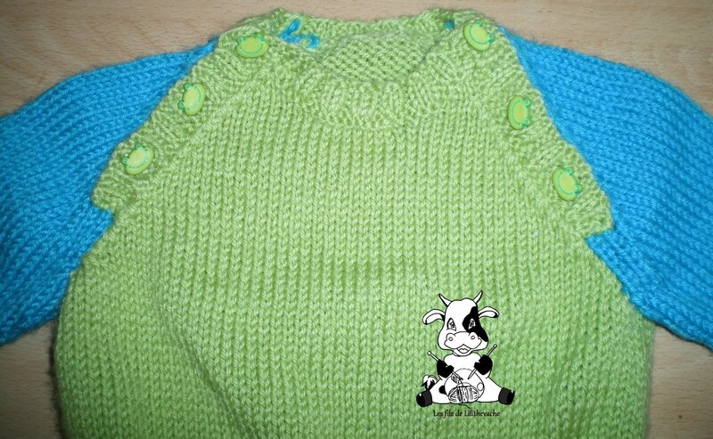 pull grenouille (2)
