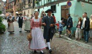 Cigognes d'Alsace2