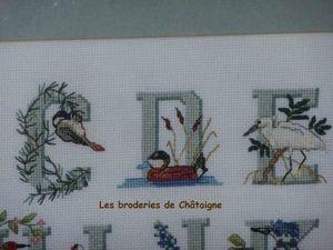 Les oiseaux C D E