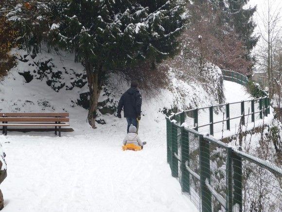 neige_janvier_2010_4