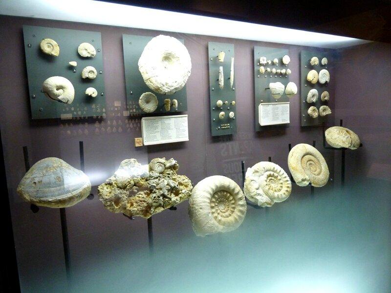 Musée de Bougon