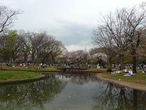 Canalblog_Tokyo03_11_Avril_2010_081