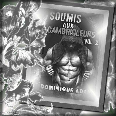 Soumis aux cambrioleurs volume 2 (Dominique Adam)