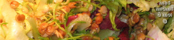Lentilles corail germes et salade