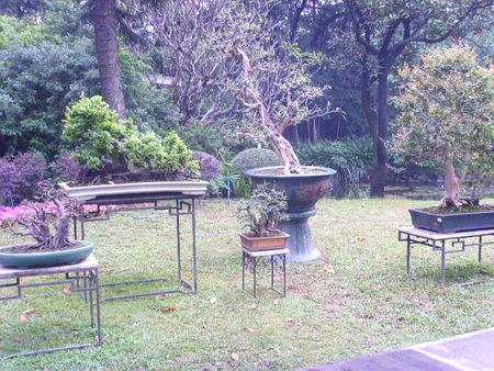 Mus e chen resto populaire march aux oiseaux et jardin - Jardin de chen ...