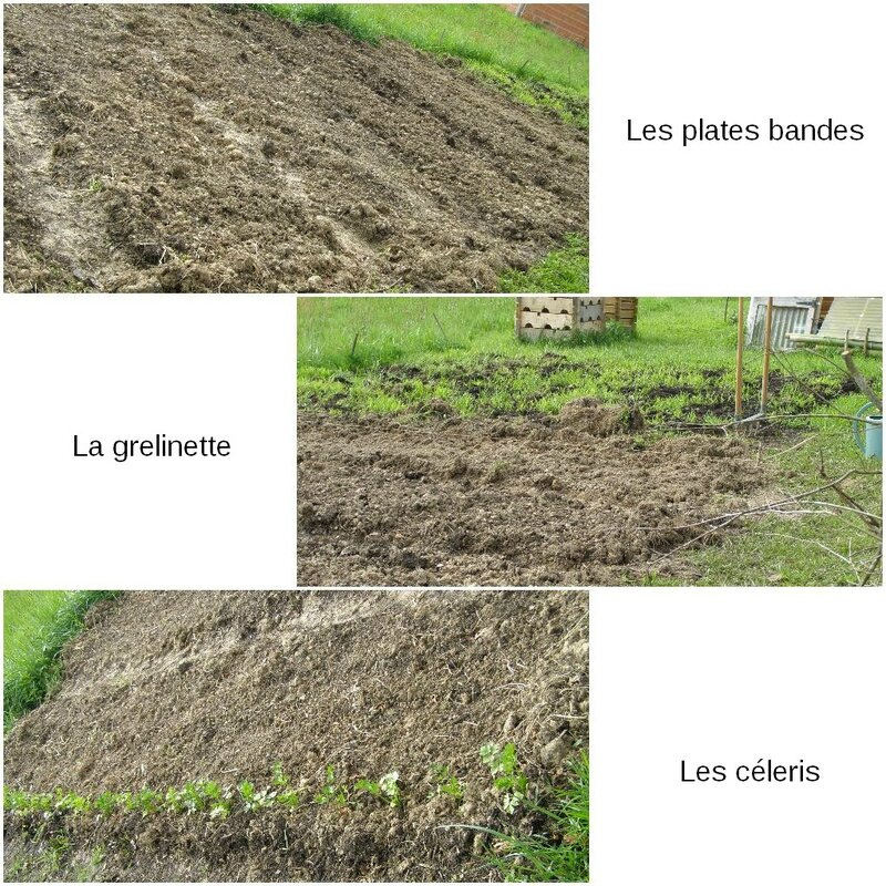 preparation et plantation avril 2016