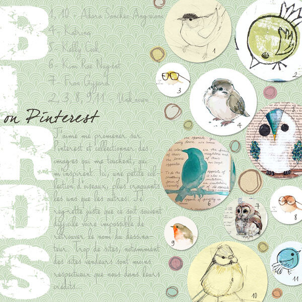 16-01 Birds on pinterest