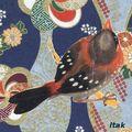 collage oiseau