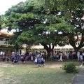 Ecole Basile Allas Port-Mathurin 09011