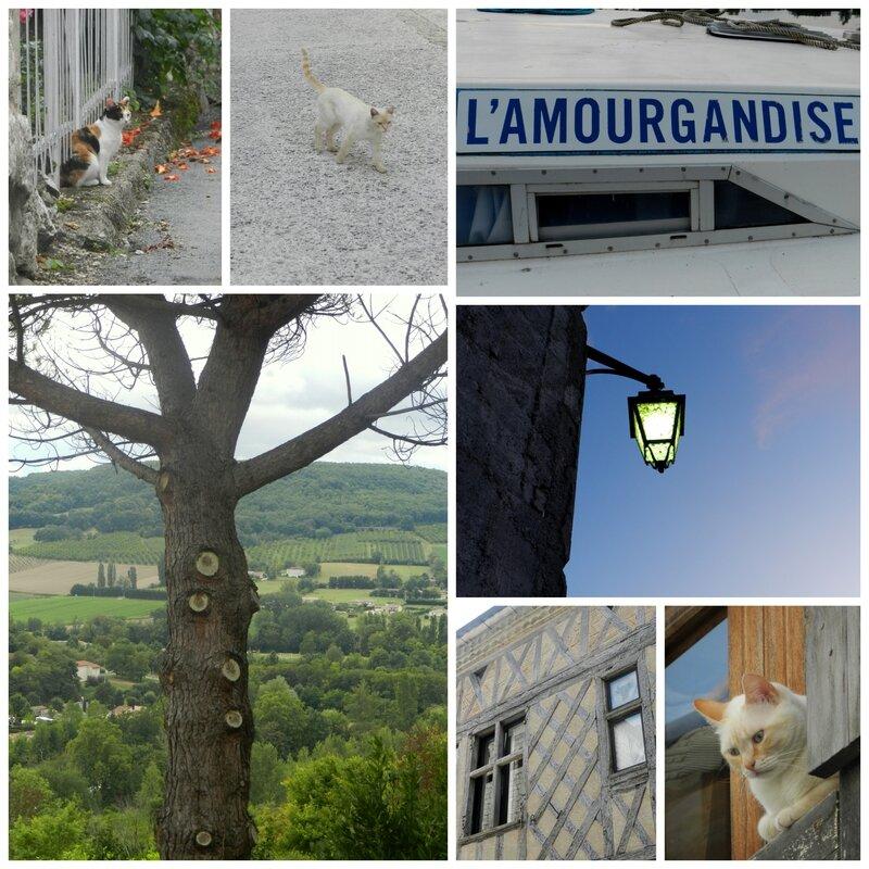 Vacances 2014 Penne d'Agenais5