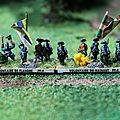 Brigade legere Volontaire du Hainaut et volontaire de Flandre
