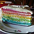 Le rainbow cake de florence