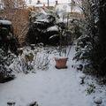 fin novembre dans le jardin