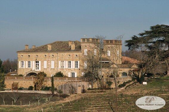 Chateau_de_TERRIDE