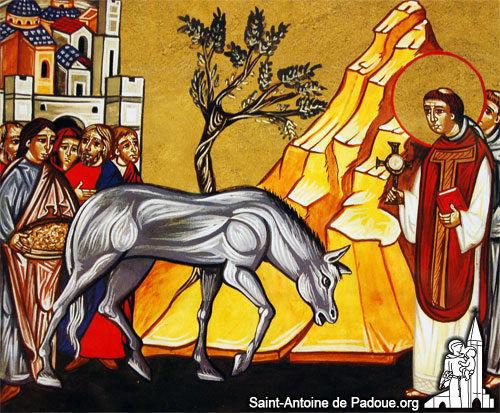 img-saint-antoine-06