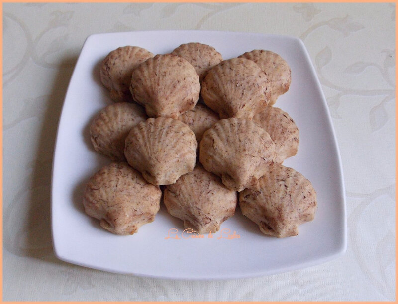 coquillages-coco-mirabelles2