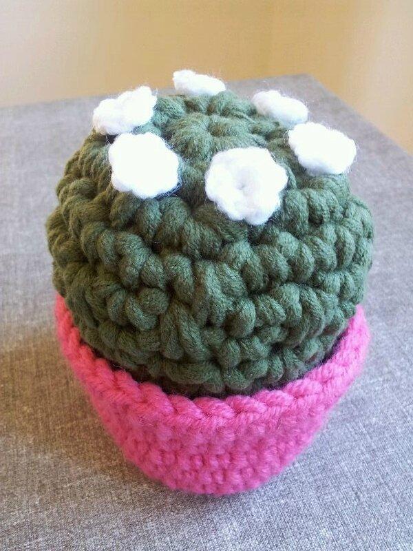 gros cactus grosse laine 2
