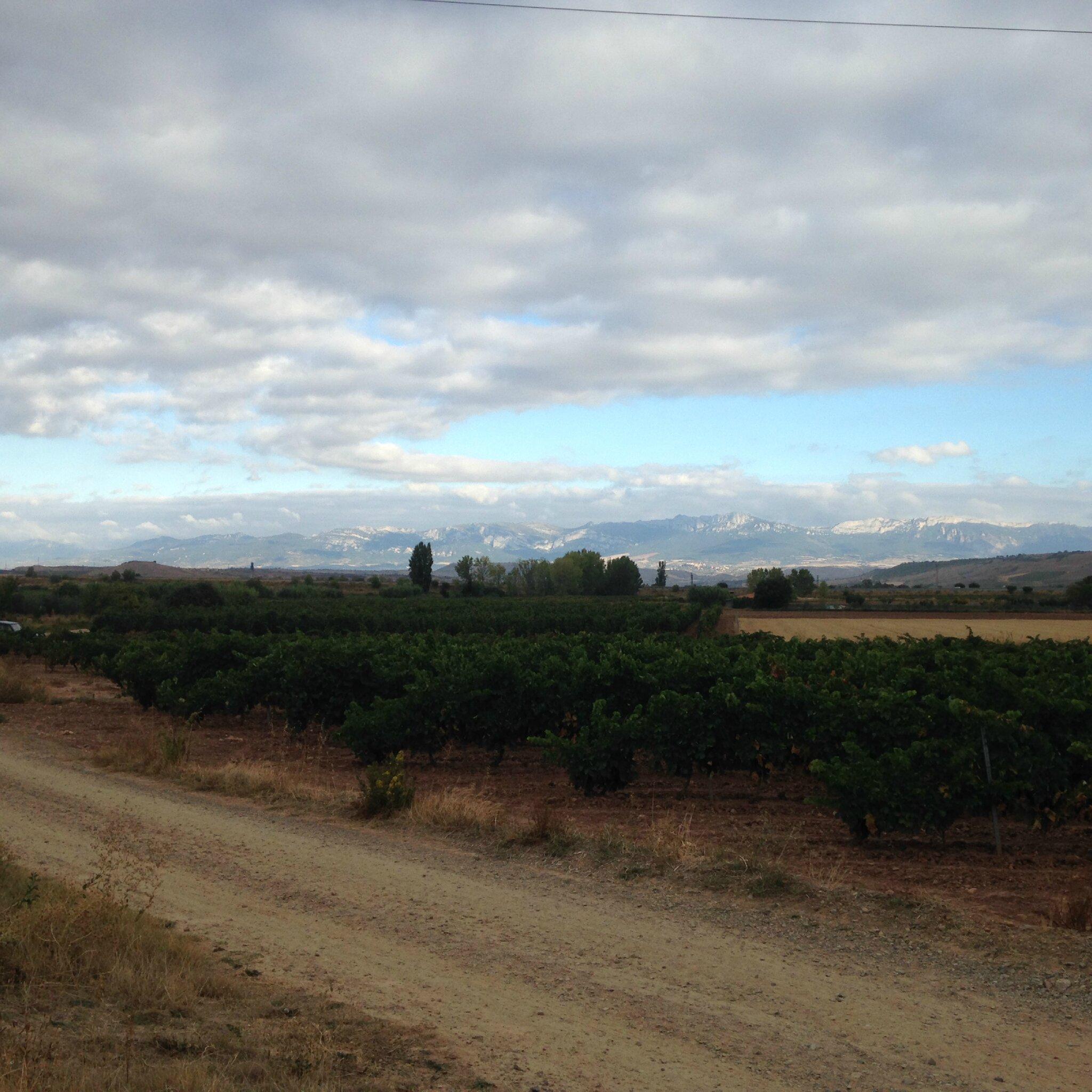 5ème tronçon : 7ème étape de Logrono à Najera 28 kms