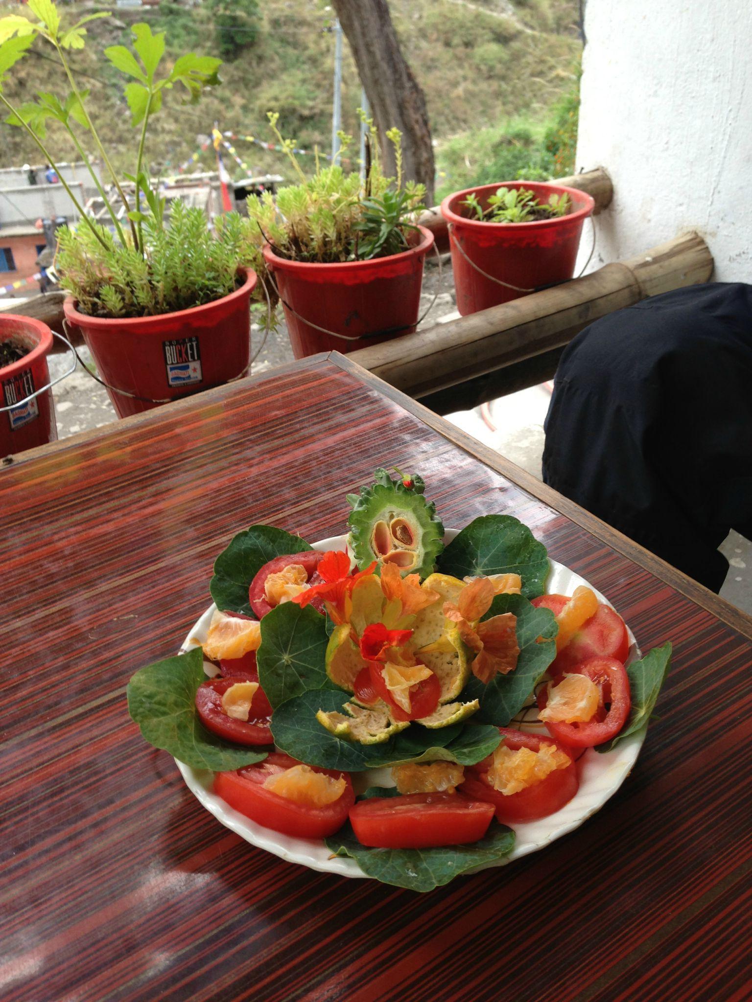 F&P Salade minute Evil Faces et Capucines - Langtang