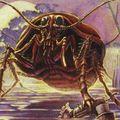 Ode aux blattes