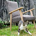 Fauteuil scandinave. Creation Le Meuble du Photographe
