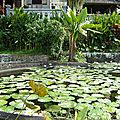 080_Tirta Gangga_jardin