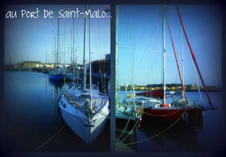 collage_stmalo