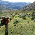 144 Vers le Col de Pucaraju